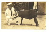 """Bill Telling His Owner Good,"" man in uniform shaking the hoof of a goat in a U.S.S...."