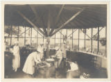 Women canning produce in Asheville, N.C.