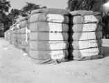Bales of cotton.