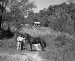 Cherokee farm landscape image with horse.
