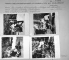 Contact sheet with re-created Oconaluftee village images.