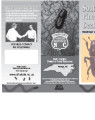 Southern pine beetles : destroyers of southern pine.