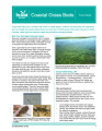 Coastal grass beds fact sheet