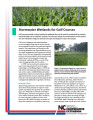 Stormwater wetlands for golf courses