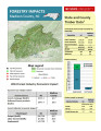 Forestry impacts : Madison County, NC [2014], Forestry contributions : Madison County