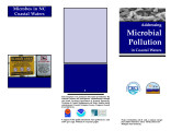 Addressing microbial pollution in coastal waters : improving environmental quality in coastal...