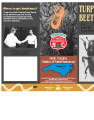 Turpentine beetles of North Carolina