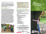 Who is responsible for the trees? : a citizens' guide to trees in the community