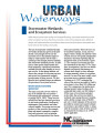 Stormwater wetlands and ecosystem services