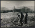 Woman plows a field at Black Mountain College
